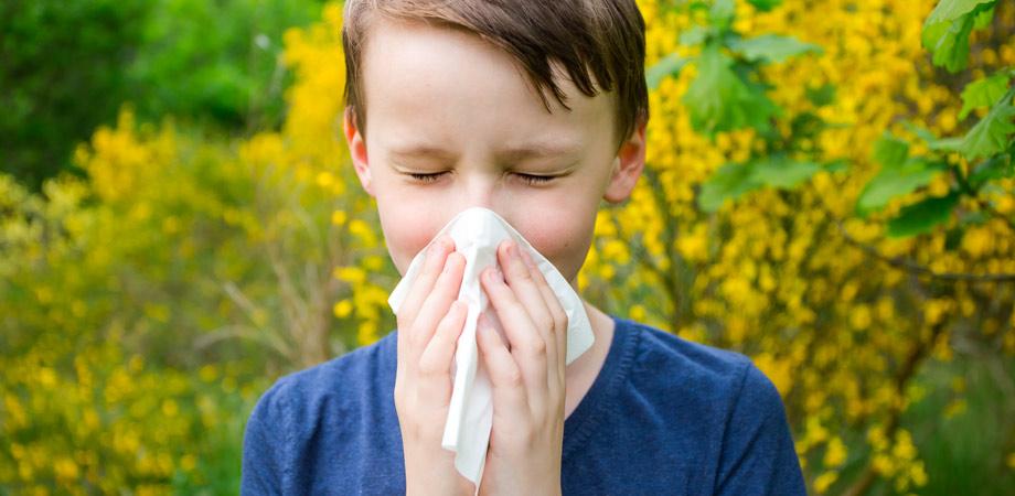 3c-salute-rinite-allergica-reggio-emilia