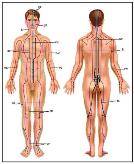 I punti dell'Agopuntura
