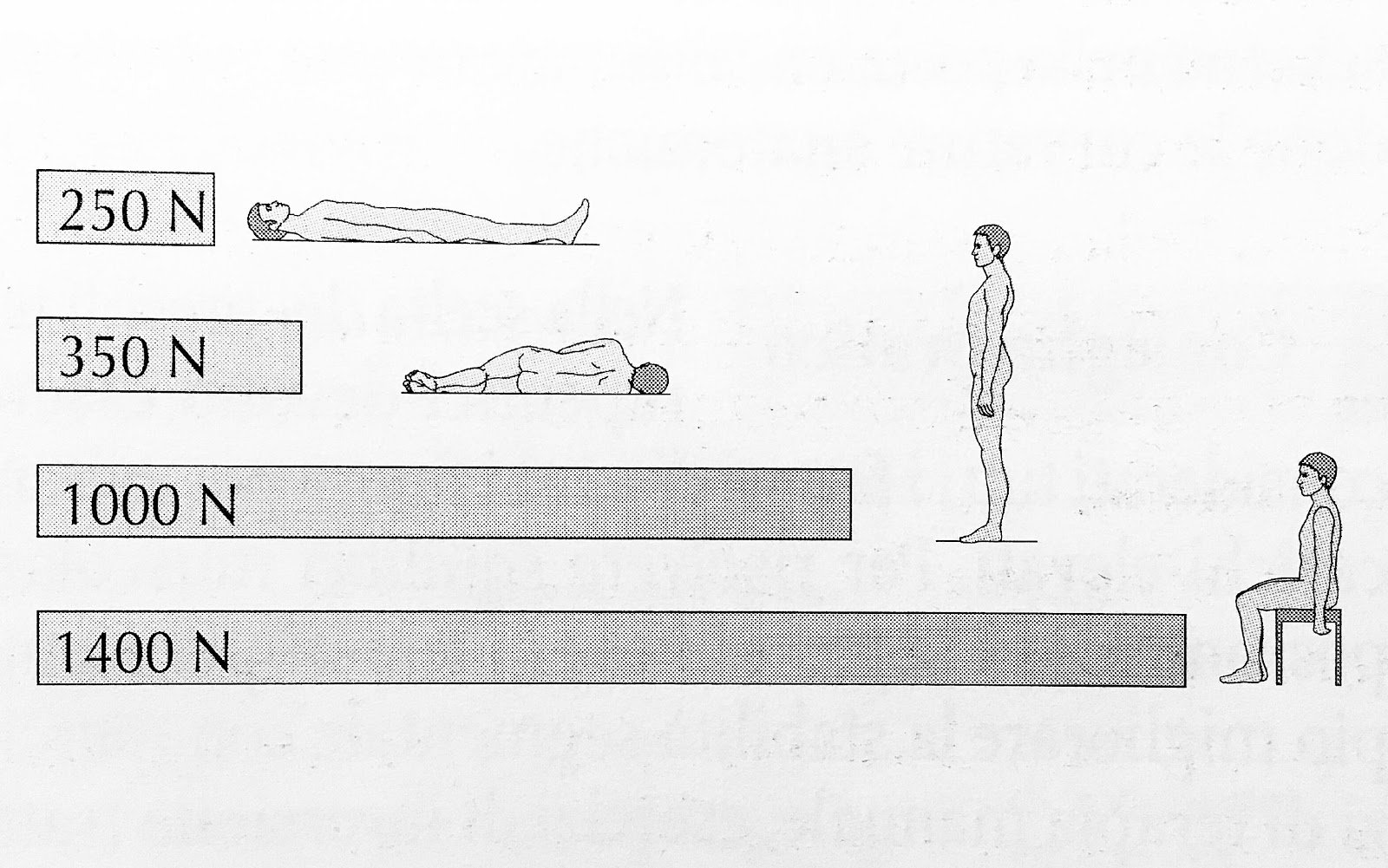 Smart working e postura